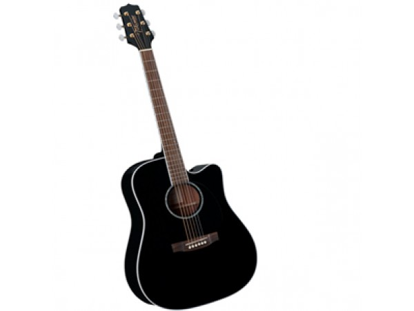 Đàn guitar Takamine EG341C