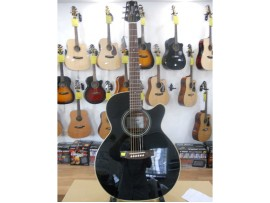 Đàn guitar Takamine ED2NC