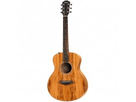 Taylor GS mini E-KOA